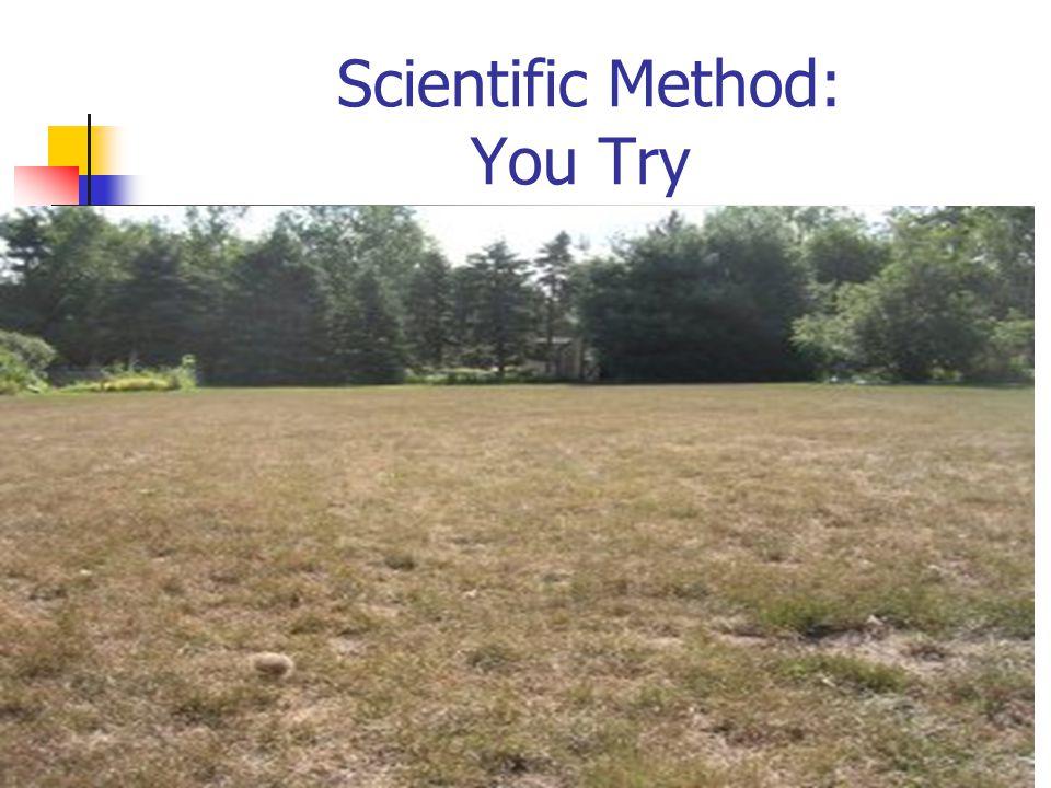 Scientific Method: You Try