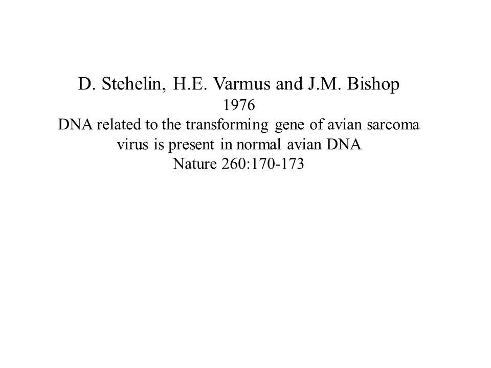 D. Stehelin, H.E. Varmus and J.M.