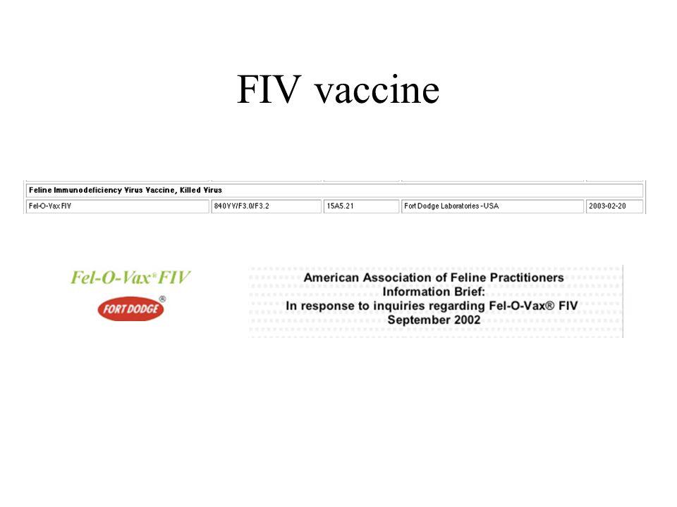 FIV vaccine
