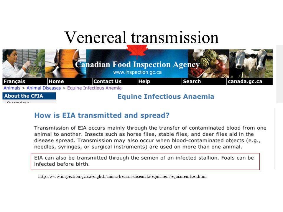 Venereal transmission http://www.inspection.gc.ca/english/anima/heasan/disemala/equianem/equianemfse.shtml
