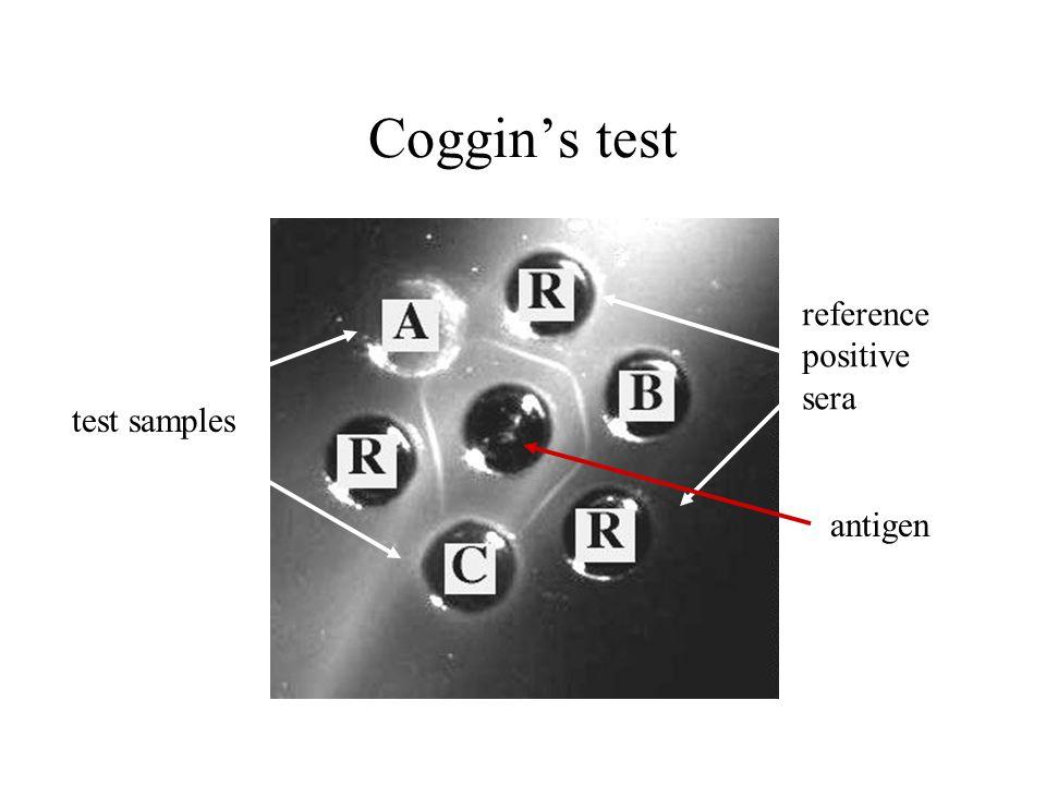 Coggin's test antigen reference positive sera test samples