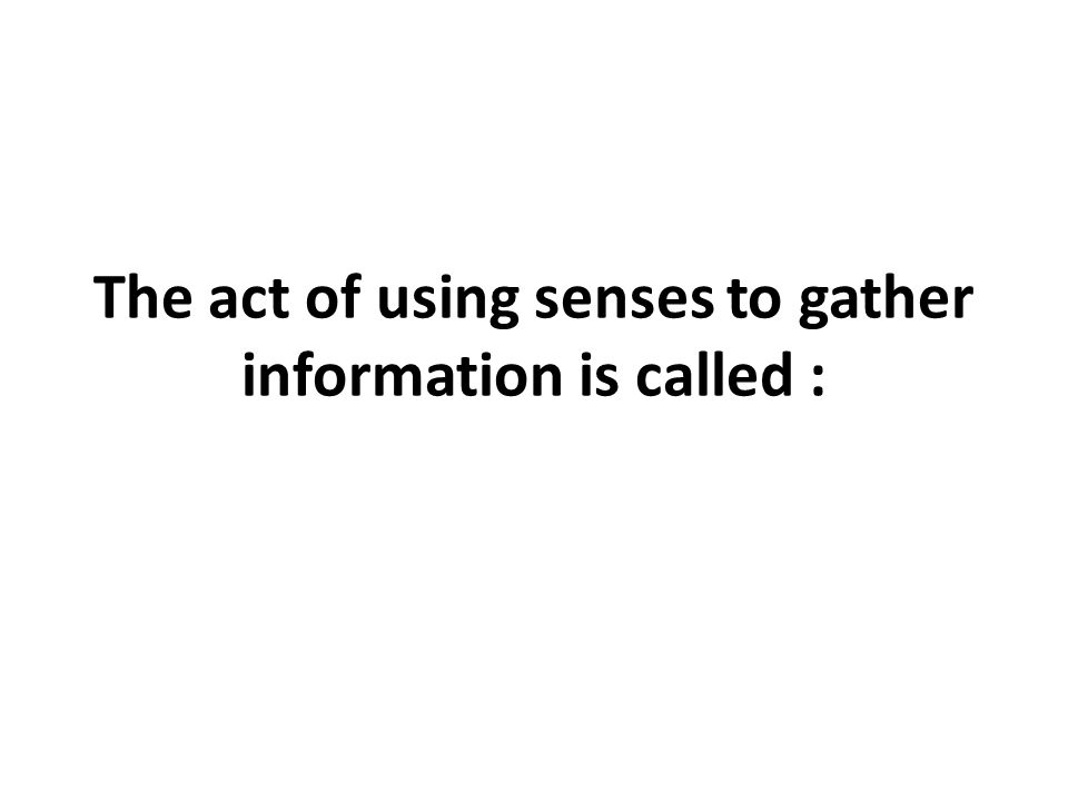 The act of using senses to gather information is called :