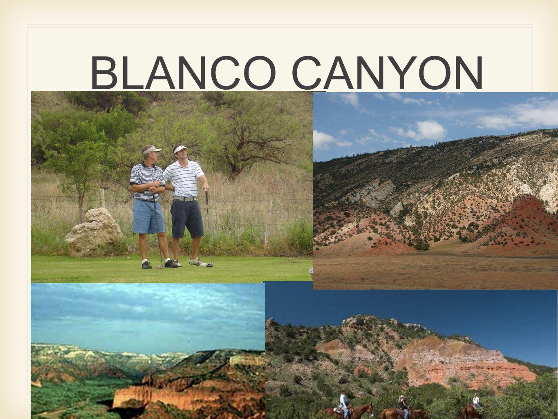 BLANCO CANYON