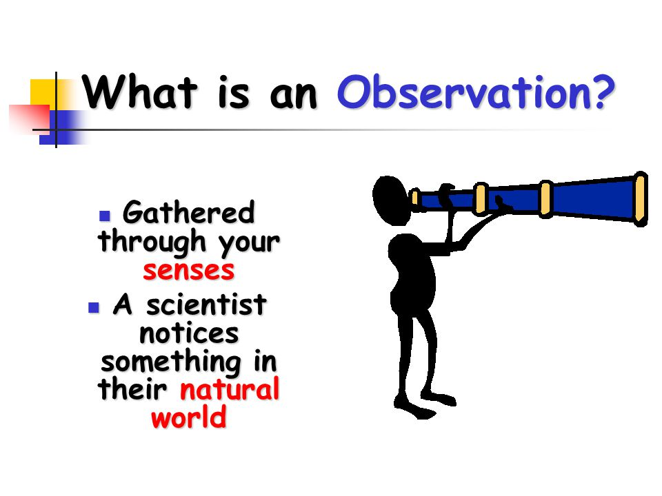What is an Observation? Gathered through your senses Gathered through your senses A scientist notices something in their natural world A scientist not