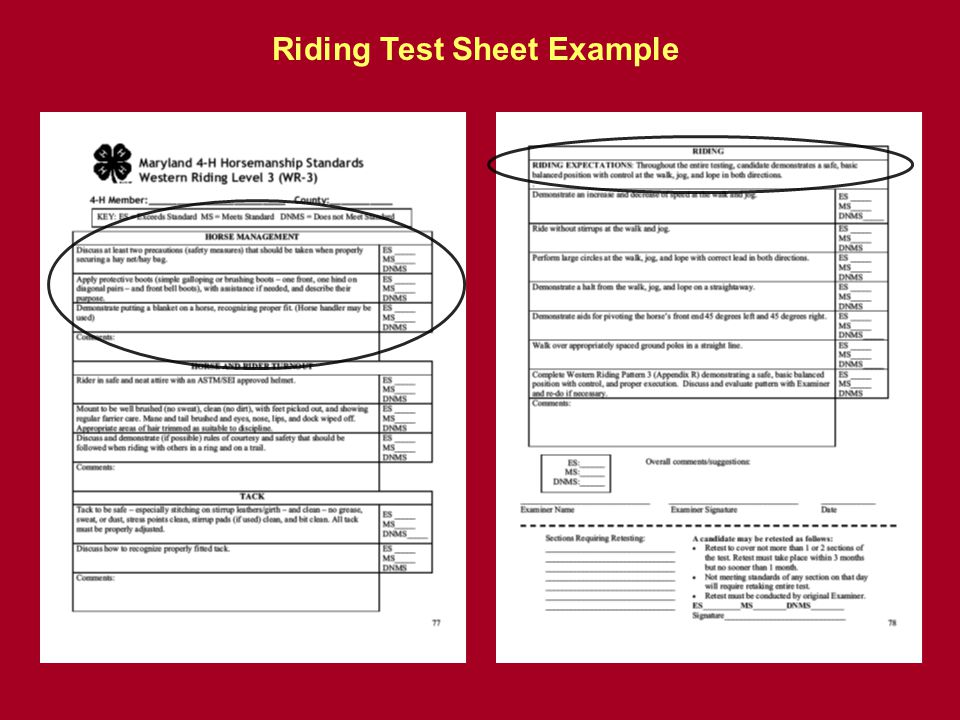 Riding Test Sheet Example