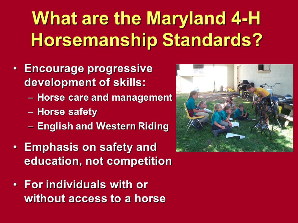 What are the Maryland 4-H Horsemanship Standards? Encourage progressive development of skills: –Horse care and management –Horse safety –English and W