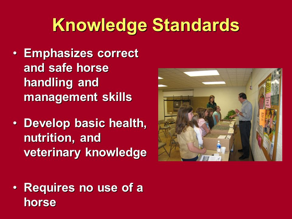 Knowledge Standards Emphasizes correct and safe horse handling and management skillsEmphasizes correct and safe horse handling and management skills D