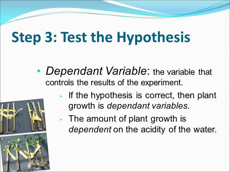 Step 3: Test the Hypothesis Dependant Variable: the variable that controls the results of the experiment. If the hypothesis is correct, then plant gro
