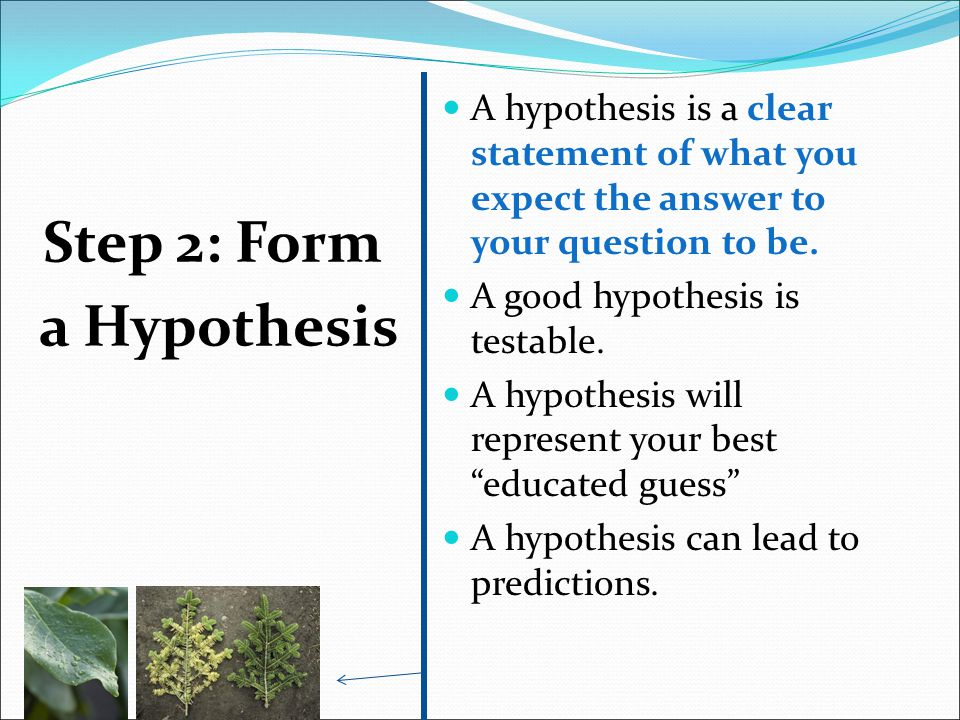 Step 2: Form a Hypothesis A hypothesis is a clear statement of what you expect the answer to your question to be. A good hypothesis is testable. A hyp