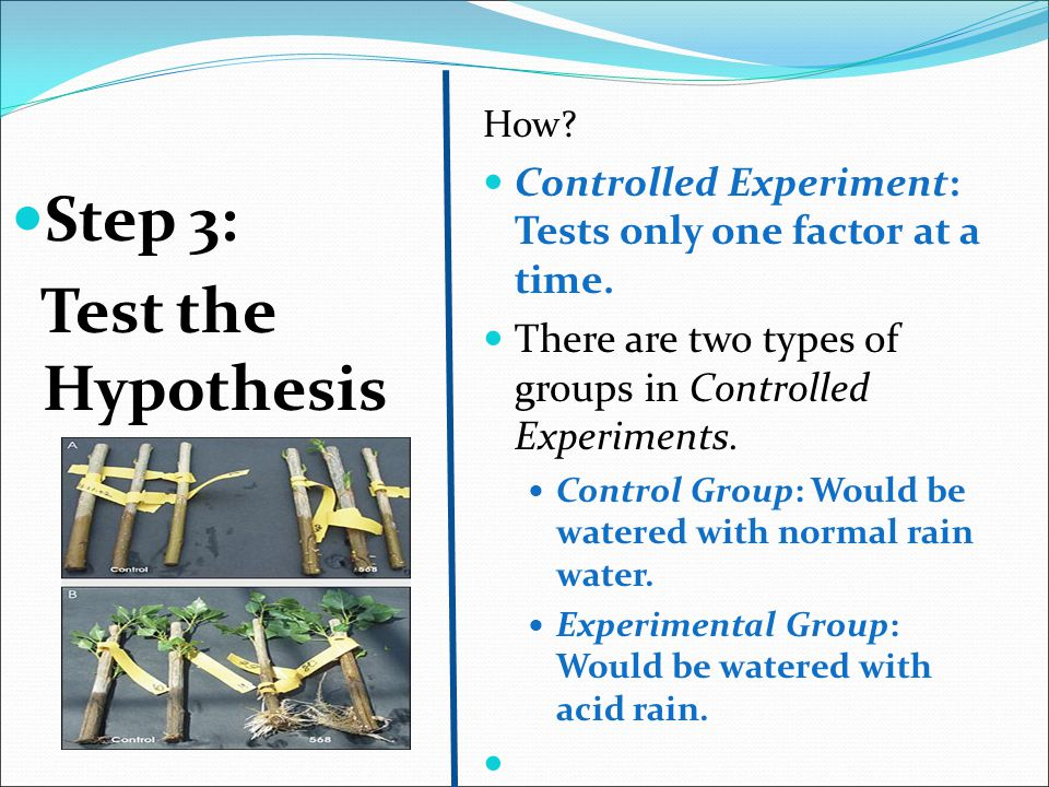 Step 3: Test the Hypothesis How? Controlled Experiment: Tests only one factor at a time. There are two types of groups in Controlled Experiments. Cont