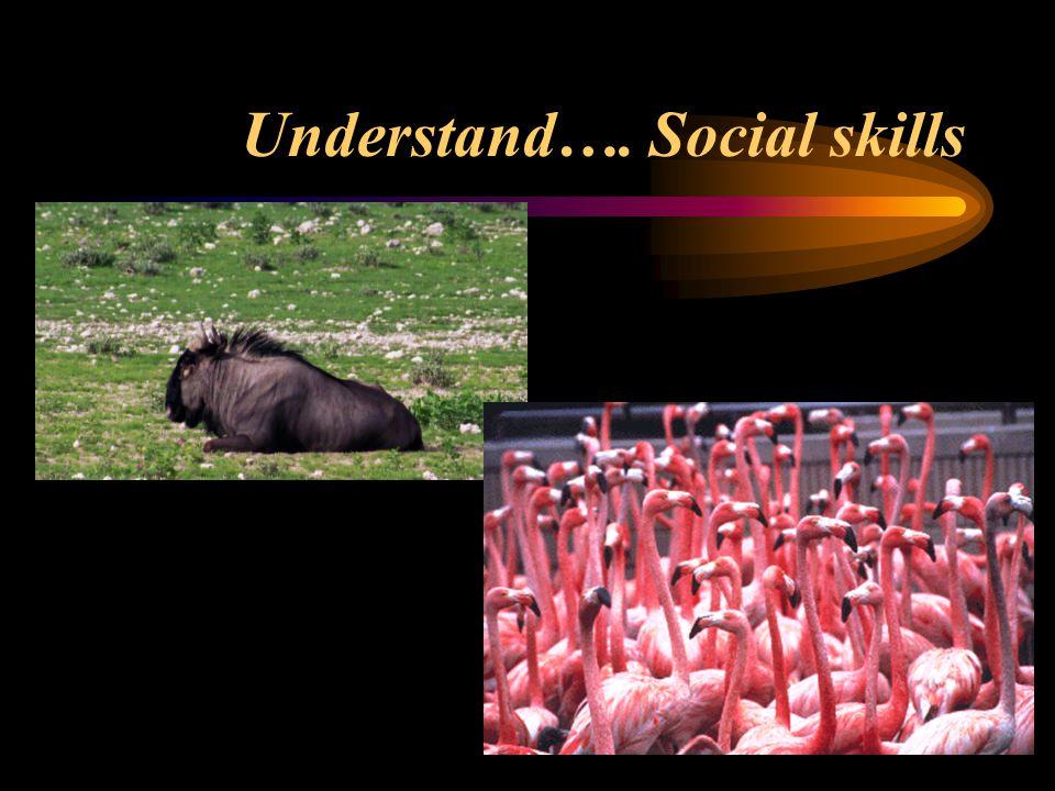Understand…. Social skills