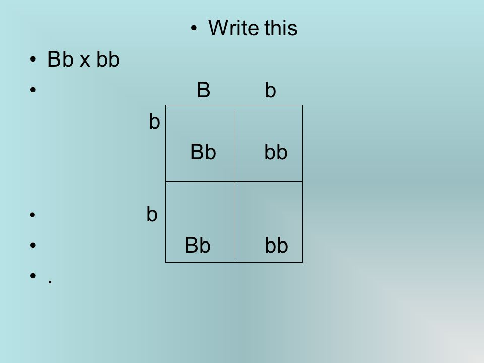 Write this Bb x bb B b b Bb bb b.