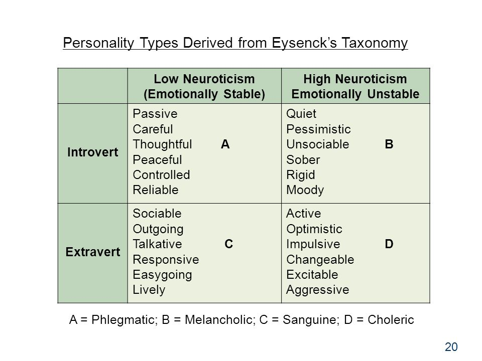 Psychology 30520 Personality Types Derived from Eysenck's Taxonomy Low Neuroticism (Emotionally Stable) High Neuroticism Emotionally Unstable Introvert Passive Careful Thoughtful A Peaceful Controlled Reliable Quiet Pessimistic Unsociable B Sober Rigid Moody Extravert Sociable Outgoing Talkative C Responsive Easygoing Lively Active Optimistic Impulsive D Changeable Excitable Aggressive A = Phlegmatic; B = Melancholic; C = Sanguine; D = Choleric 20