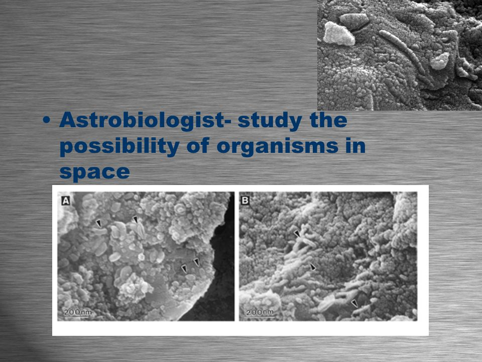 Astrobiologist- study the possibility of organisms in space