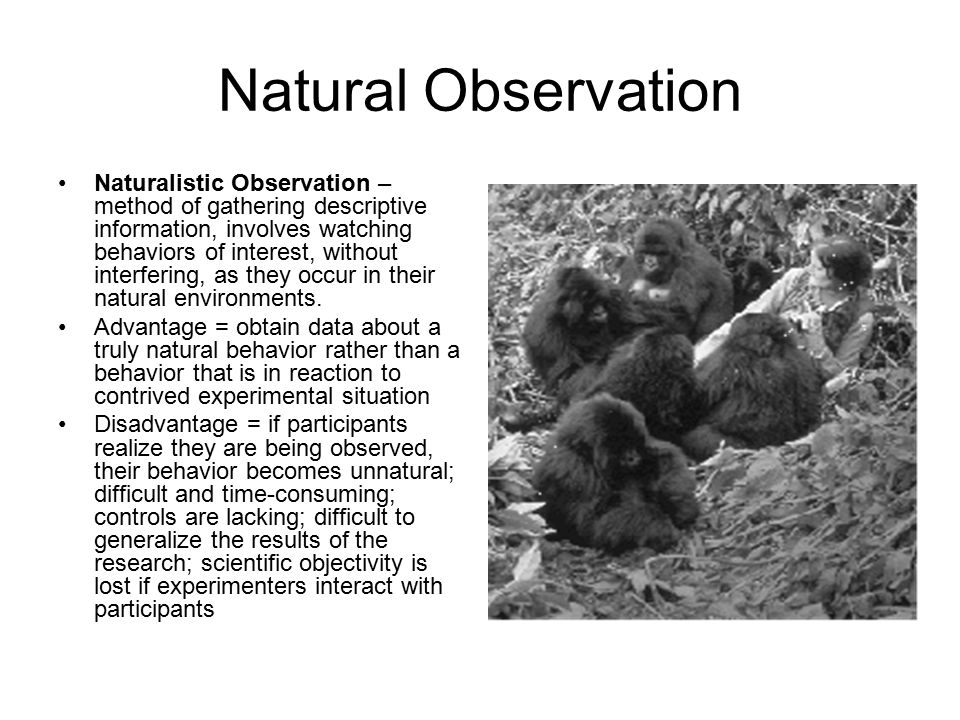 Natural Observation Naturalistic Observation – method of gathering descriptive information, involves watching behaviors of interest, without interfering, as they occur in their natural environments.