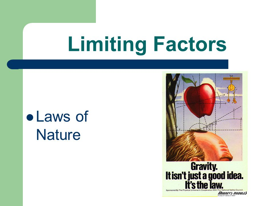 Limiting Factors Rules of the project
