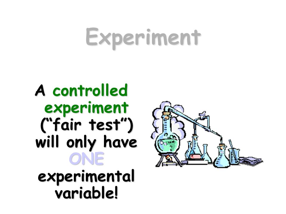 "Experiment A controlled experiment (""fair test"") will only have ONE experimental variable!"