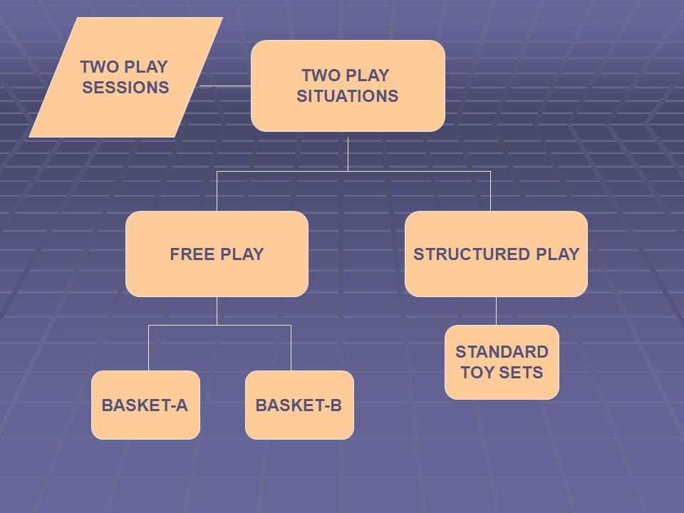 TWO PLAY SITUATIONS FREE PLAYSTRUCTURED PLAY STANDARD TOY SETS BASKET-ABASKET-B TWO PLAY SESSIONS