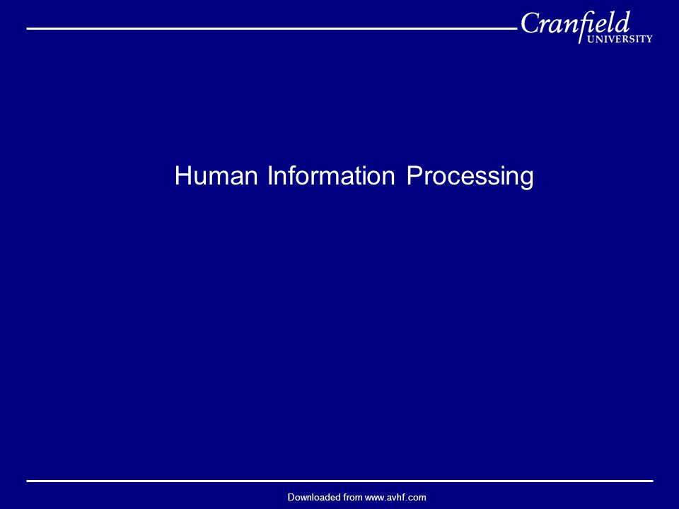 Downloaded from www.avhf.com Human Information Processing