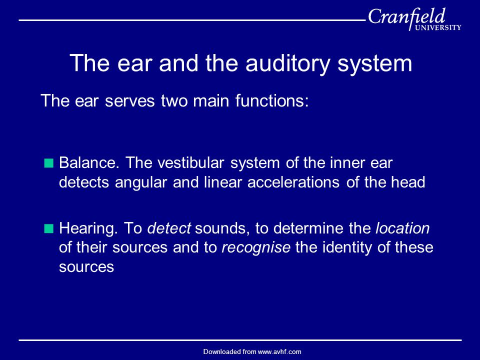 Downloaded from www.avhf.com The ear and the auditory system  Balance. The vestibular system of the inner ear detects angular and linear acceleration