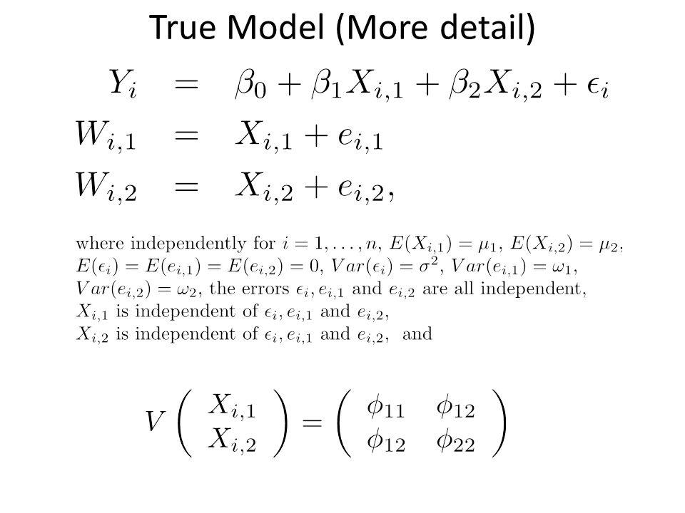 True Model (More detail)