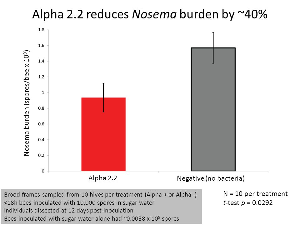 Alpha 2.2 reduces Nosema burden by ~40% Nosema burden (spores/bee x 10 9 ) Alpha 2.2 Negative (no bacteria) Brood frames sampled from 10 hives per tre