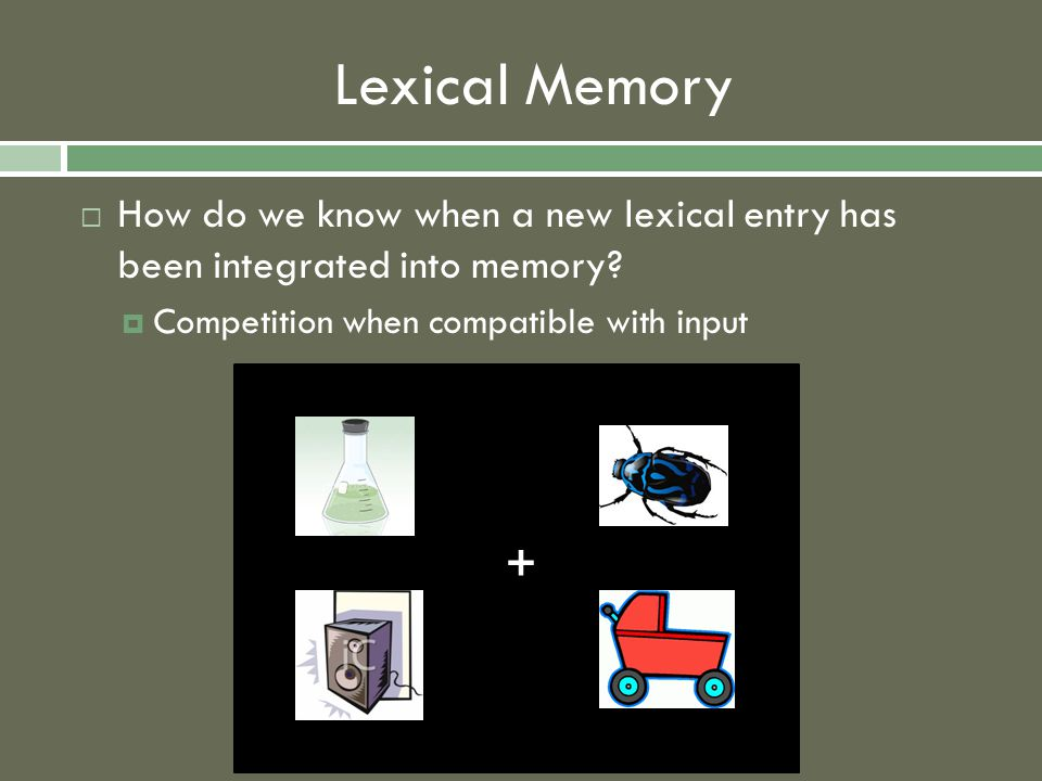 Lexical Memory  How do we know when a new lexical entry has been integrated into memory?  Competition when compatible with input +
