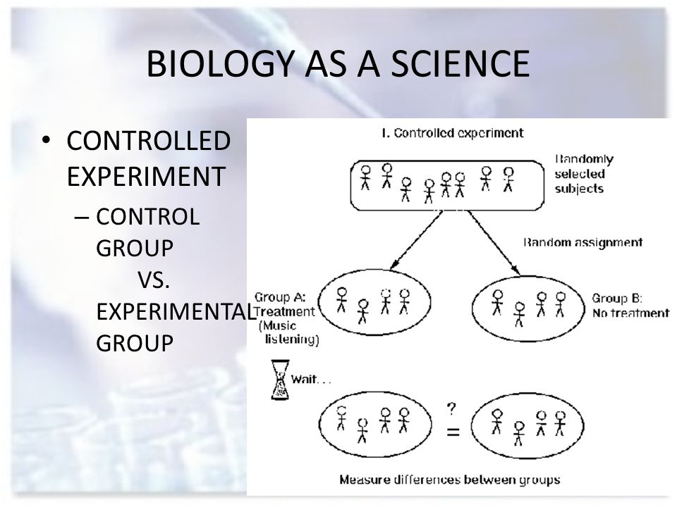 BIOLOGY AS A SCIENCE CONTROLLED EXPERIMENT – CONTROL GROUP VS. EXPERIMENTAL GROUP