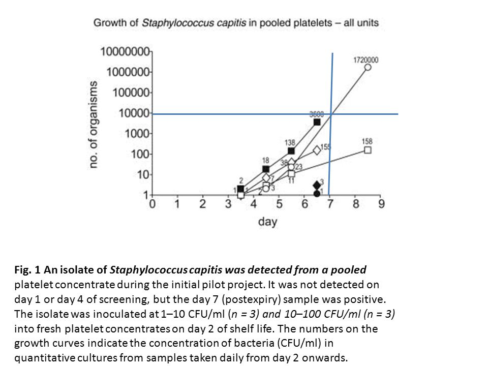 Fig. 1 An isolate of Staphylococcus capitis was detected from a pooled platelet concentrate during the initial pilot project. It was not detected on d