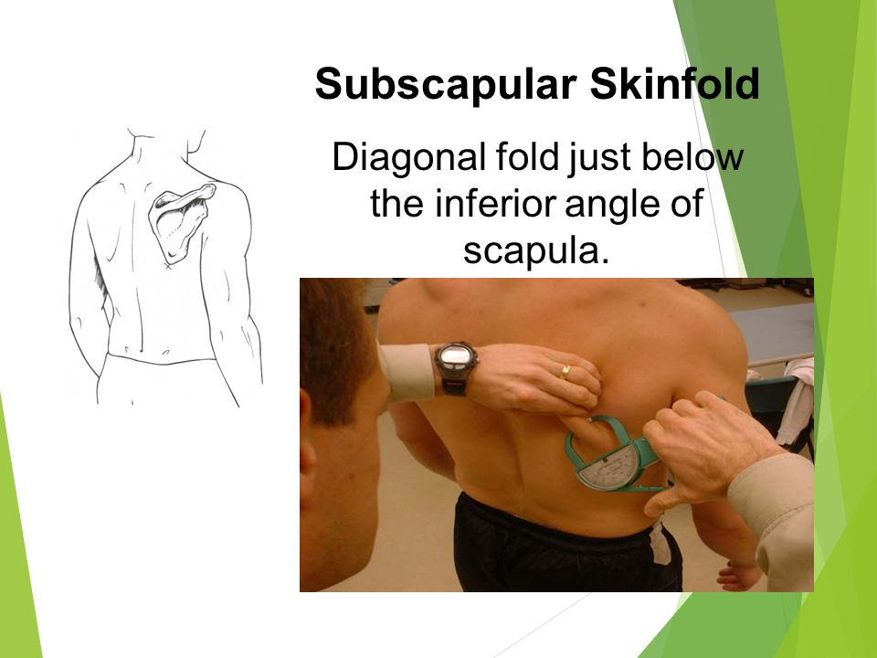 Subscapular Skinfold Diagonal fold just below the inferior angle of scapula.
