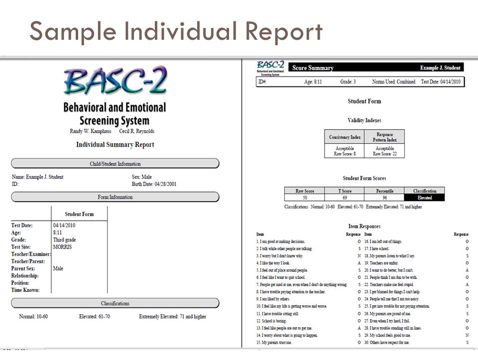 Sample Individual Report 34