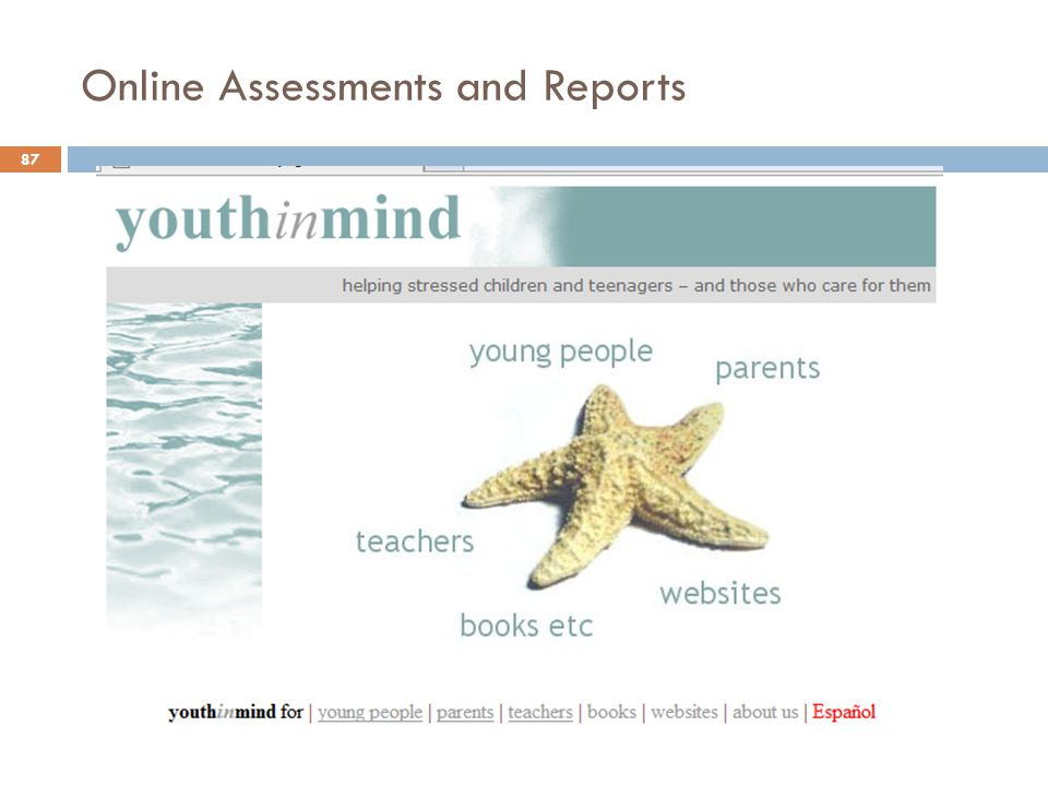Online Assessments and Reports 87