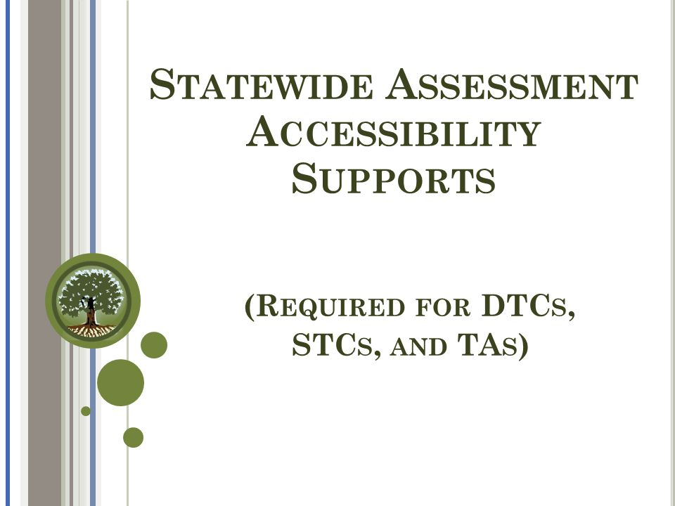 S TATEWIDE A SSESSMENT A CCESSIBILITY S UPPORTS (R EQUIRED FOR DTC S, STC S, AND TA S )