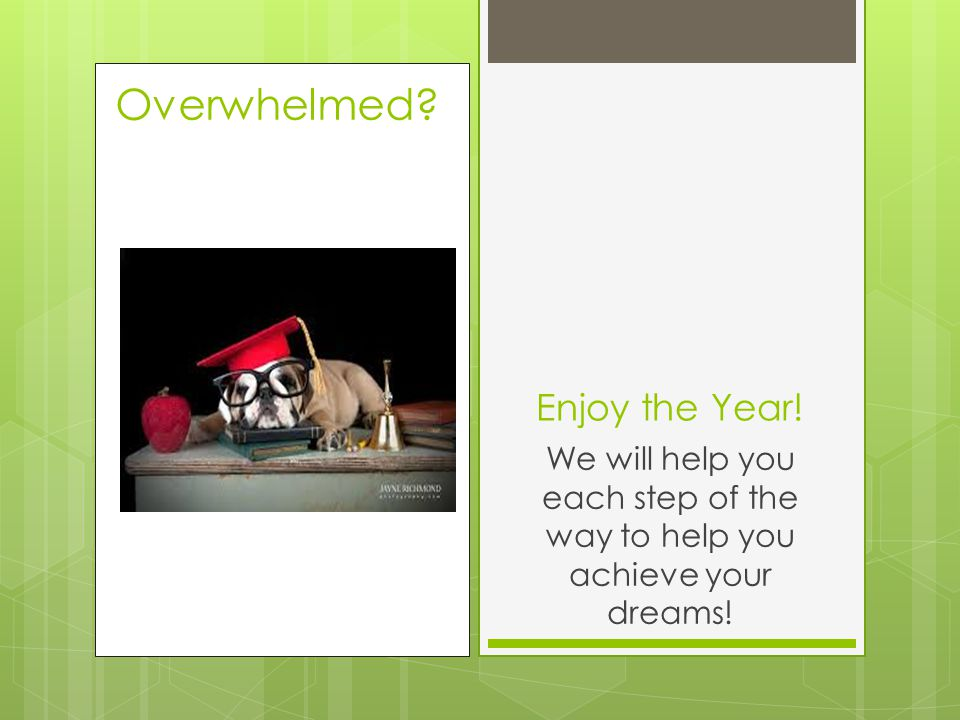 Enjoy the Year! We will help you each step of the way to help you achieve your dreams!