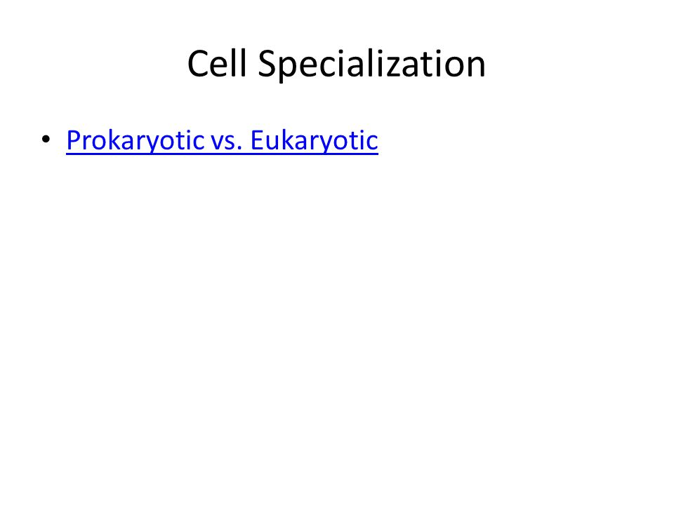 Cell Specialization Prokaryotic vs. Eukaryotic