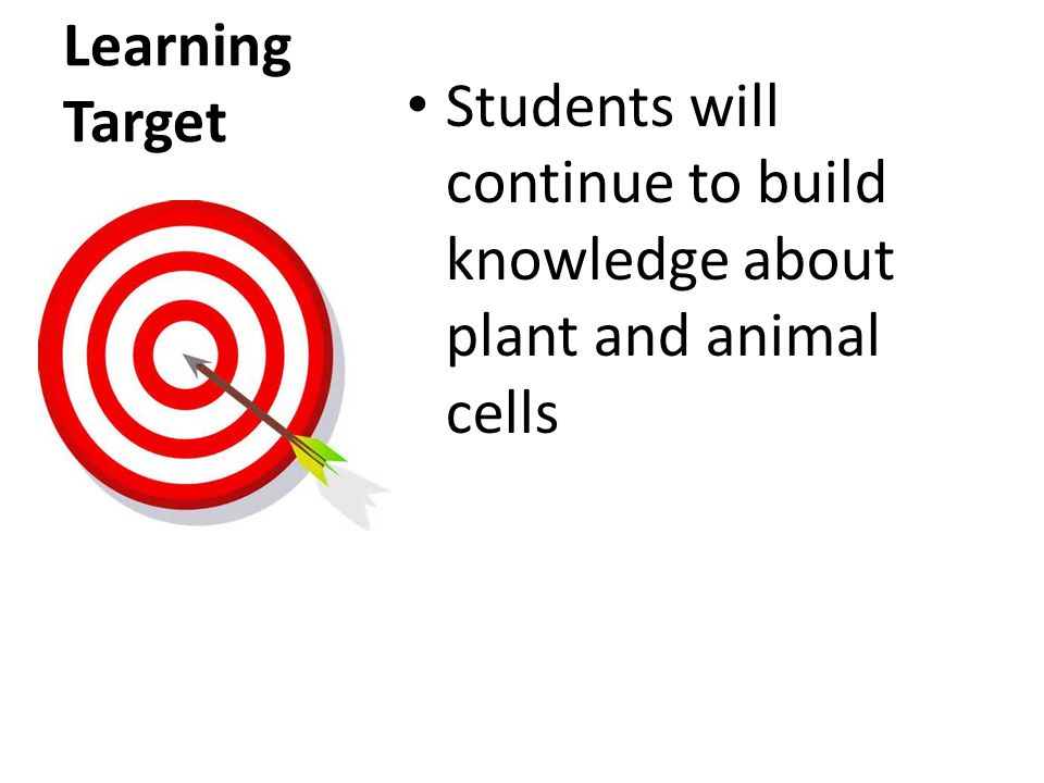 Learning Target Students will continue to build knowledge about plant and animal cells