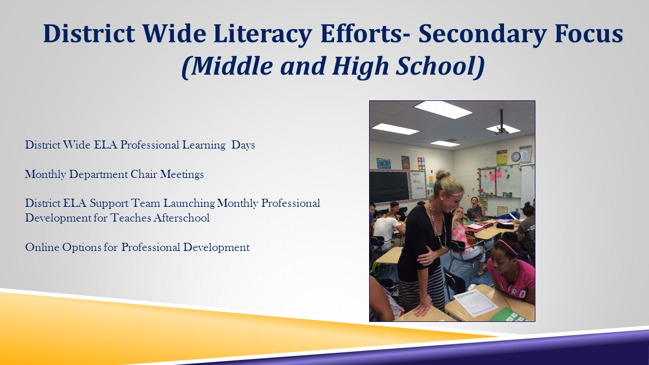 District Wide Literacy Efforts- Secondary Focus (Middle and High School) District Wide ELA Professional Learning Days Monthly Department Chair Meetings District ELA Support Team Launching Monthly Professional Development for Teaches Afterschool Online Options for Professional Development