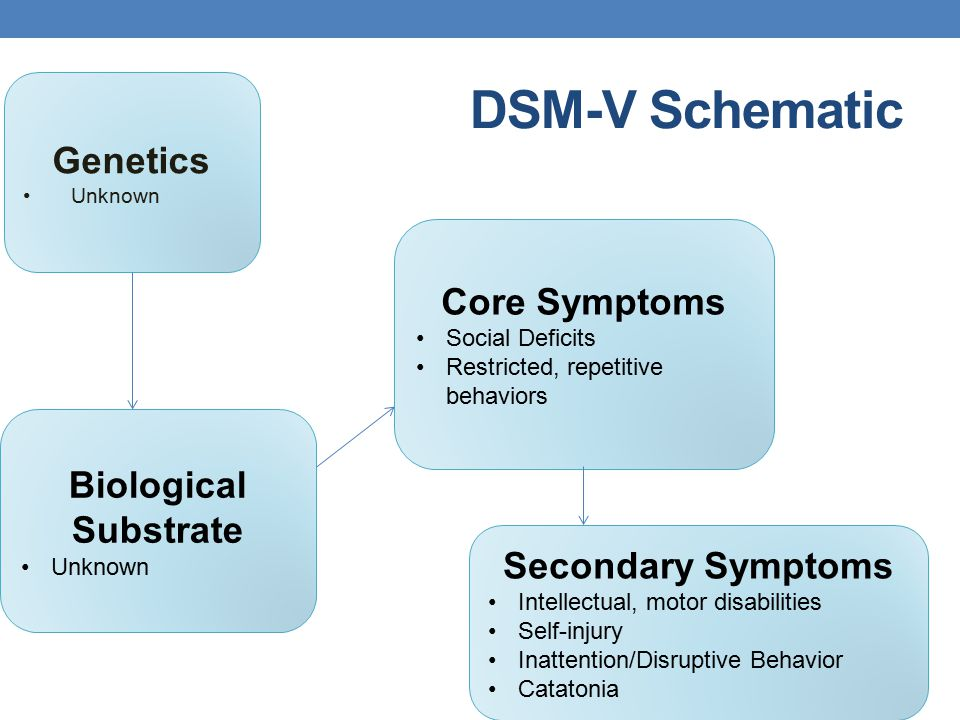 DSM-V Schematic Genetics Unknown Biological Substrate Unknown Core Symptoms Social Deficits Restricted, repetitive behaviors Secondary Symptoms Intell