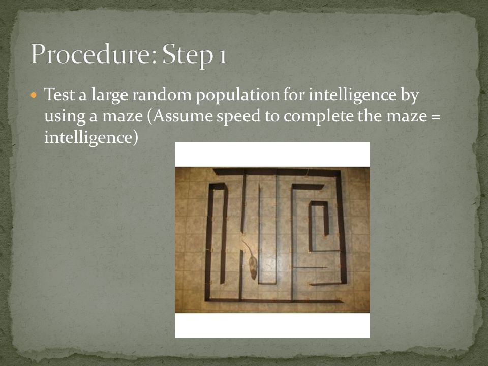 Test a large random population for intelligence by using a maze (Assume speed to complete the maze = intelligence)