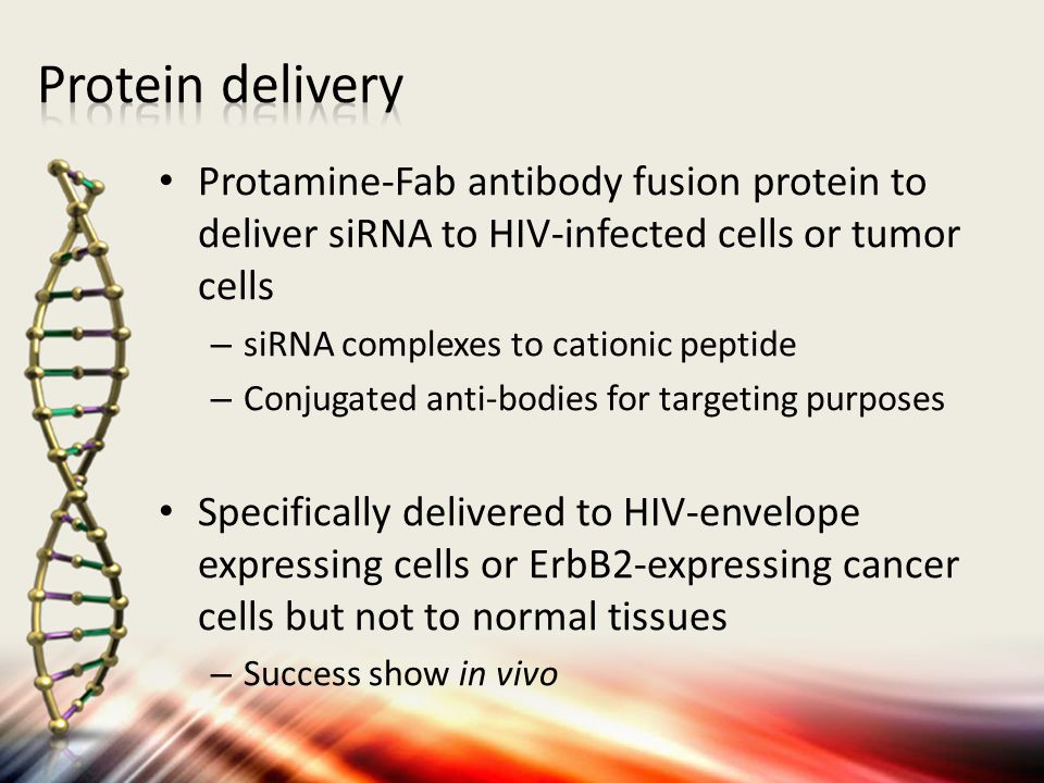 Protamine-Fab antibody fusion protein to deliver siRNA to HIV-infected cells or tumor cells – siRNA complexes to cationic peptide – Conjugated anti-bodies for targeting purposes Specifically delivered to HIV-envelope expressing cells or ErbB2-expressing cancer cells but not to normal tissues – Success show in vivo