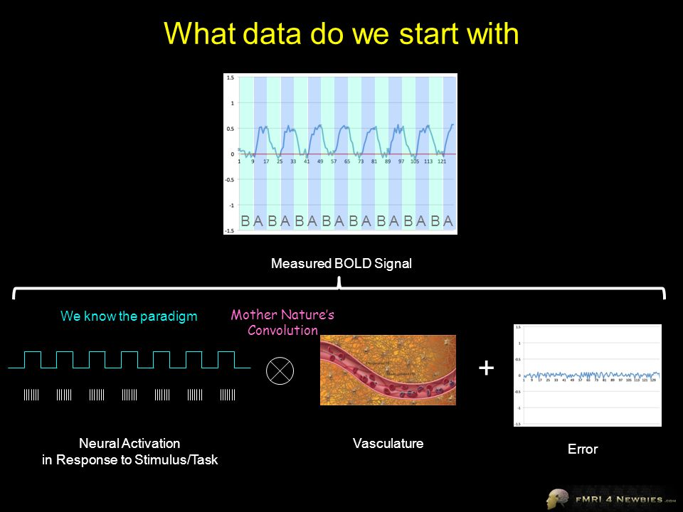 What data do we start with Neural Activation in Response to Stimulus/Task Vasculature Measured BOLD Signal + Error Mother Nature's Convolution We know the paradigm AAAAAAAABBBBBBBB