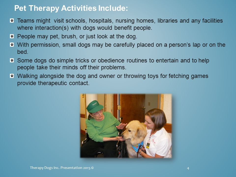 More Examples Requiring Special Permission 15 Therapy Dogs Inc.