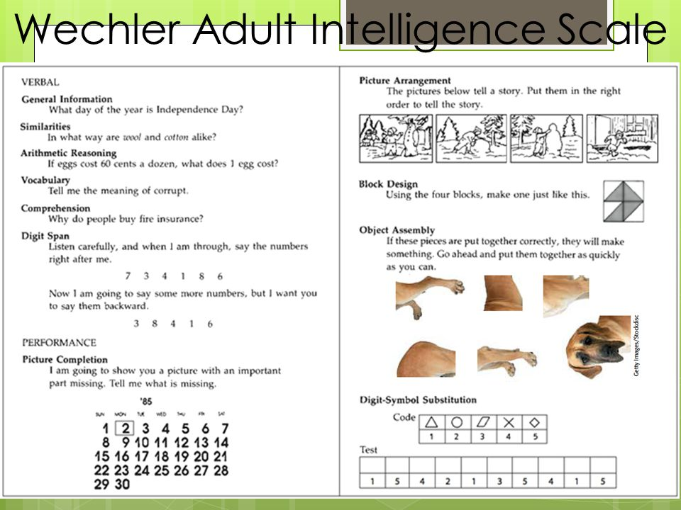 Wechler Adult Intelligence Scale