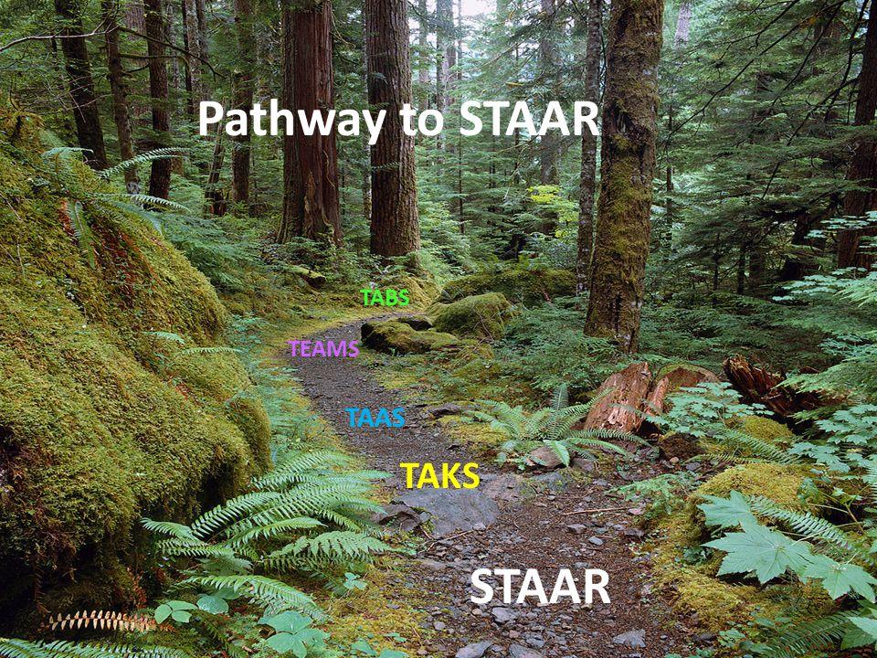 6 TABS TEAMS TAAS TAKS STAAR Pathway to STAAR
