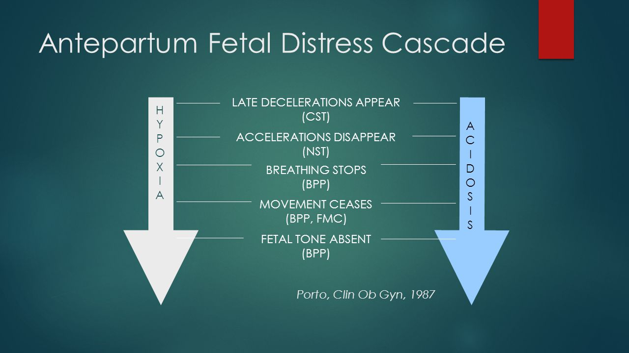 Antepartum Fetal Distress Cascade HYPOXIAHYPOXIA ACIDOSISACIDOSIS LATE DECELERATIONS APPEAR (CST) ACCELERATIONS DISAPPEAR (NST) BREATHING STOPS (BPP)