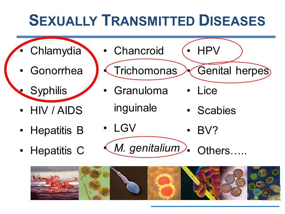 S EXUALLY T RANSMITTED D ISEASES Chlamydia Gonorrhea Syphilis HIV / AIDS Hepatitis B Hepatitis C Chancroid Trichomonas Granuloma inguinale LGV M. geni