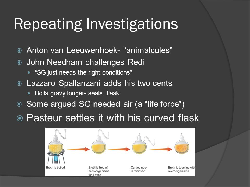 Repeating Investigations  Anton van Leeuwenhoek- animalcules  John Needham challenges Redi SG just needs the right conditions  Lazzaro Spallanzani adds his two cents Boils gravy longer- seals flask  Some argued SG needed air (a life force )  Pasteur settles it with his curved flask