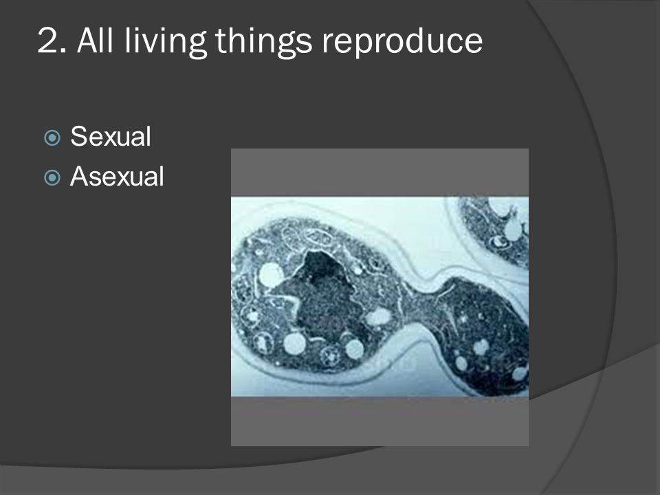 2. All living things reproduce  Sexual  Asexual