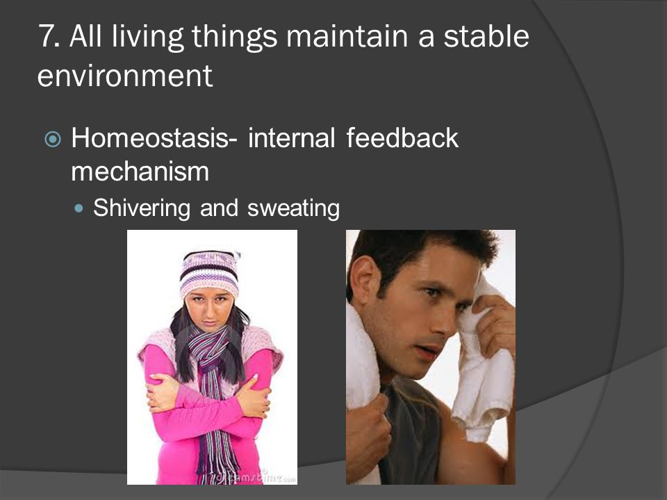 7. All living things maintain a stable environment  Homeostasis- internal feedback mechanism Shivering and sweating