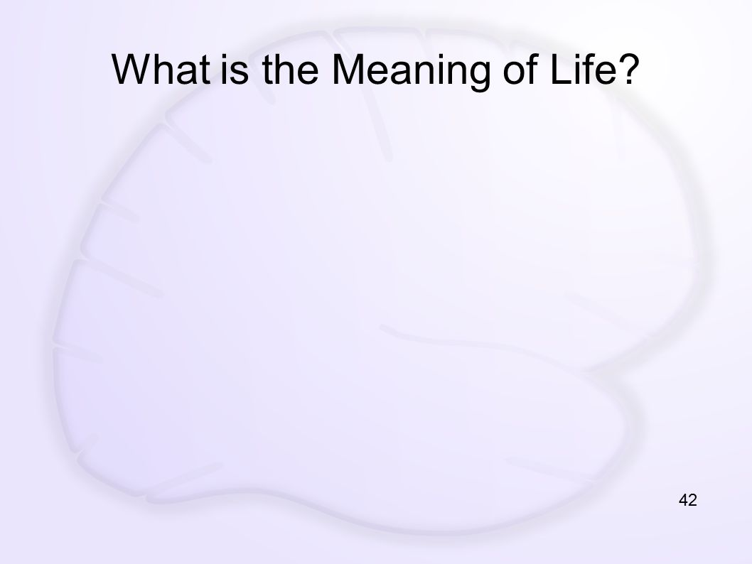What is the Meaning of Life? 42